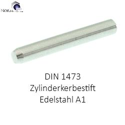 Zylinderkerbstift DIN 1473 Edelstahl A1 1.4305 2 x 8-100 St/ück